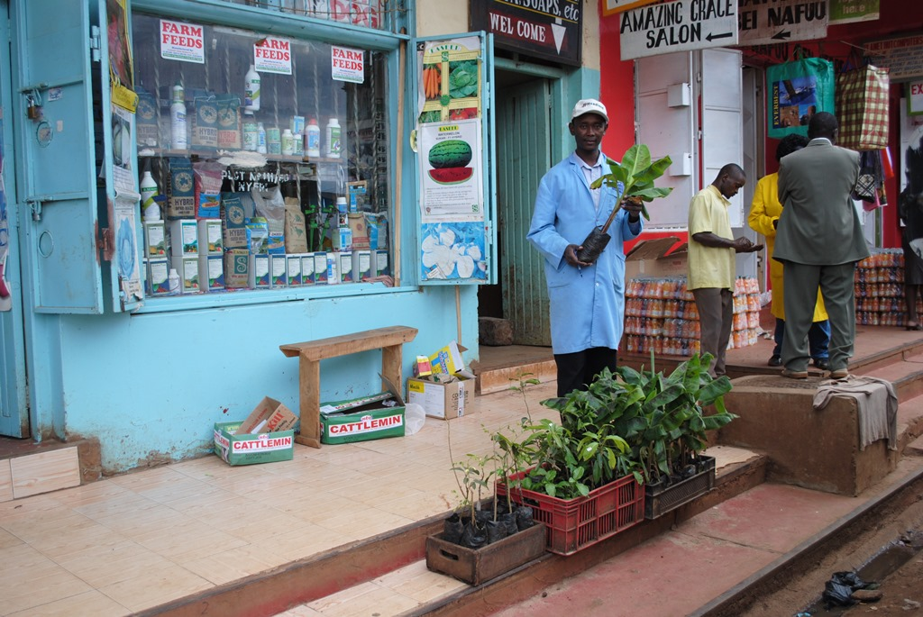 Richard Macharia, a tissue culture banana hardening nursery owner outside his agrovet shop in Nyeri Town